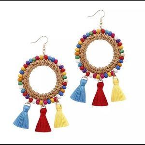 Beautiful Earrings Multi Colored Straw